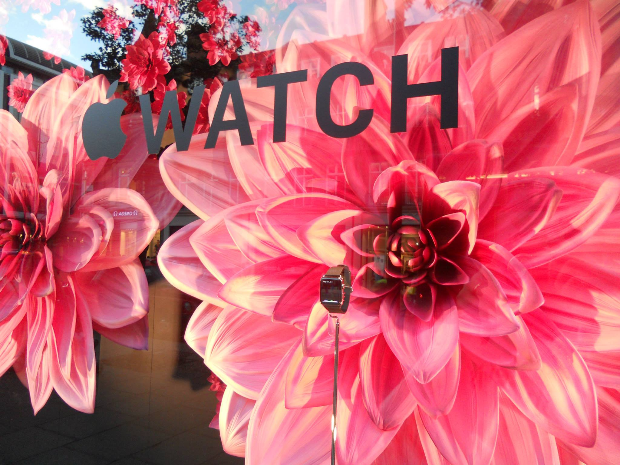 apple-iwatch-pink-profusion